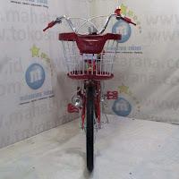 20 exotic city bike