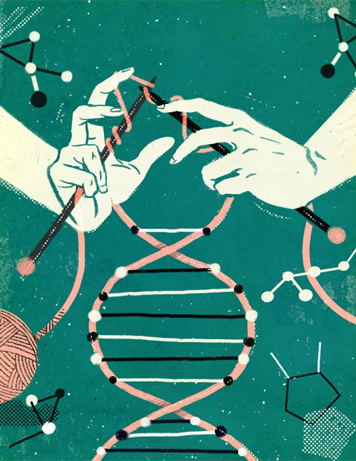DUNGANDZI: La biologie punu