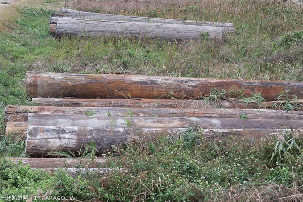 《台中.龍井》龍井原木場|順興木業儲木場|非洲花梨木|堆積成山的巨木|台中火力發電廠旁