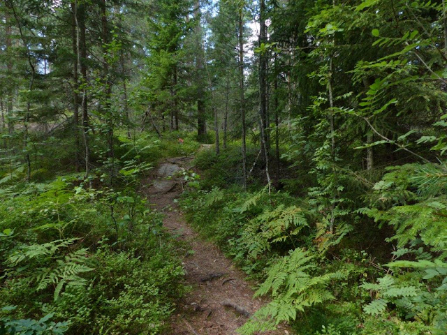Schweden Campingtrip Urlaub mit Hund Rundreise Roadtrip Sommer Yttre Bodane Nationalpark