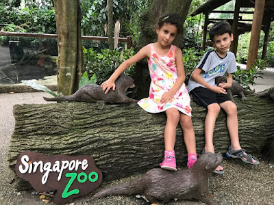 Singapore Zoo review