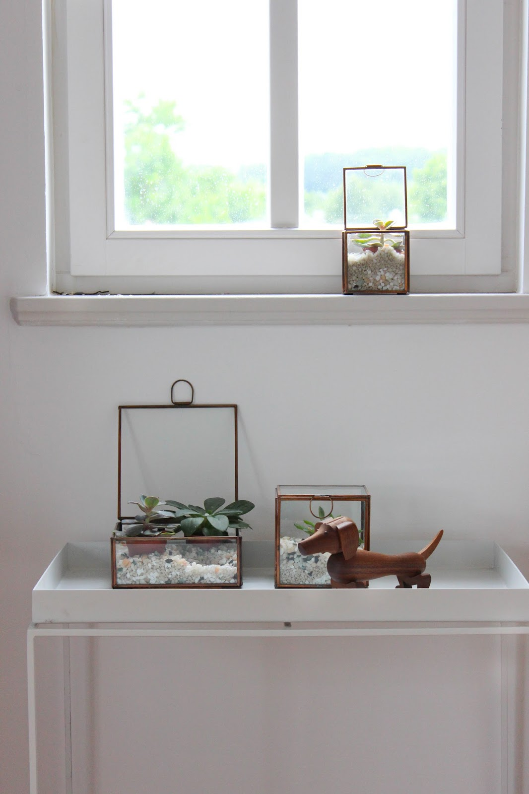 Sukkulenten in glasboxen dekorieren erste bilder aus der for Dekorieren der wohnung