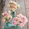 13 Vas Bunga dari Botol Kaca Bekas Ini