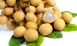 ialah buah mata kucing atau buah longan 11 Manfaat Buah Kelengkeng Untuk Kesehatan