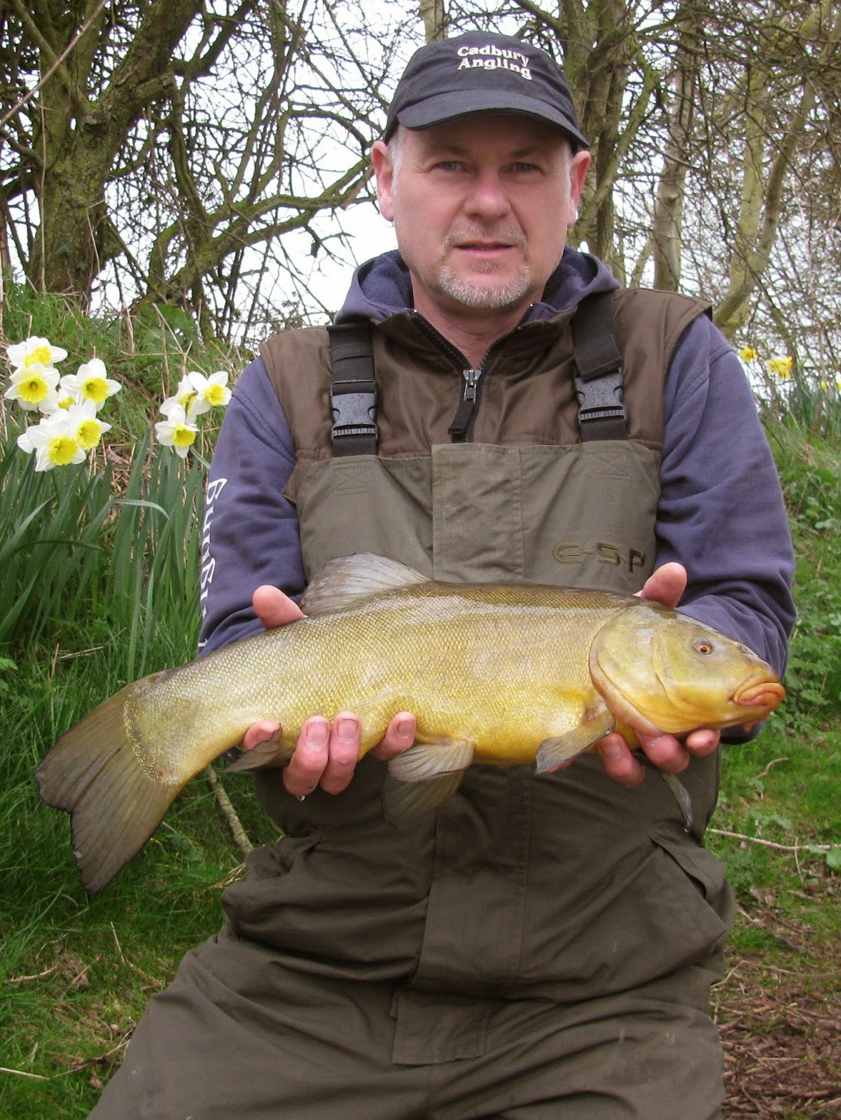 Trying for Tench