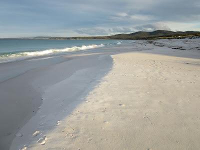 Playa de St. Helens, en Tasmania
