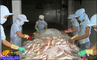 Công ty tư vấn đầu tư trạm xử lý nước thải nhà máy chế biến thủy sản - Thống kê tại tỉnh Bà Rịa-Vũng Tàu