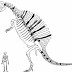 Spinosaurus: The New Evidence.