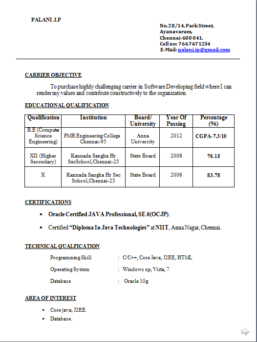 Best Academic Cv Examples. Typical Resume Format Pdf Resume Format