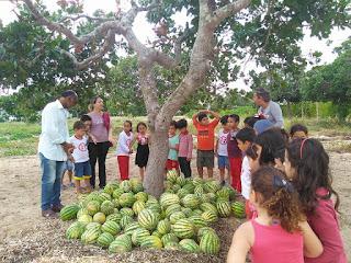 Alunos de Escola Infantil visitam chácara sustentável em Baraúna