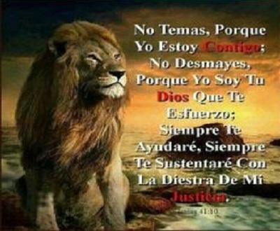 Frases Bonitas De Esperanza Unifeed Club