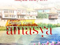 8th International Cartoon Contest Amayasa Turkey 2016