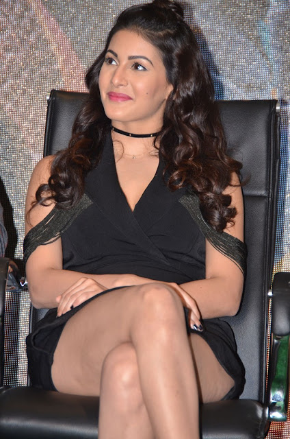Amyra Dastur Hot Photos at Kung Fu Yoga Press Meet