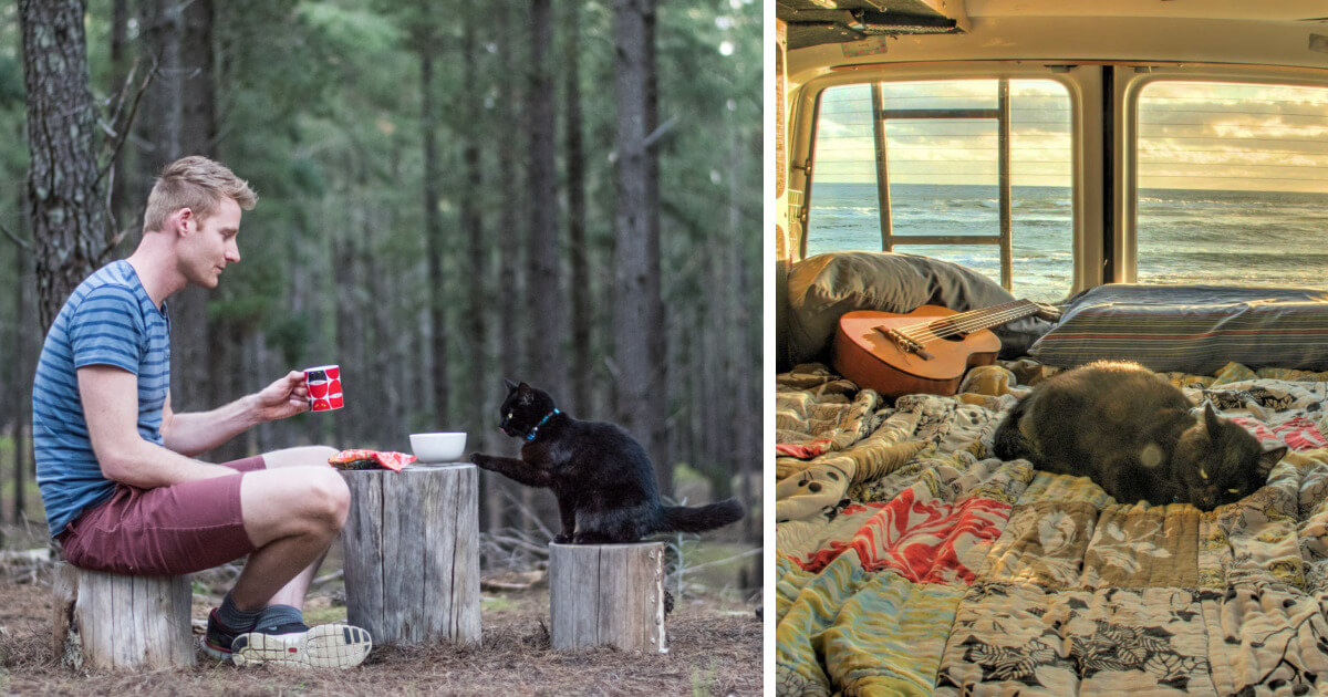 A Guy Quit His Job And Sold Everything 3.5 Years Ago To Travel With His Cat Willow In A Campervan