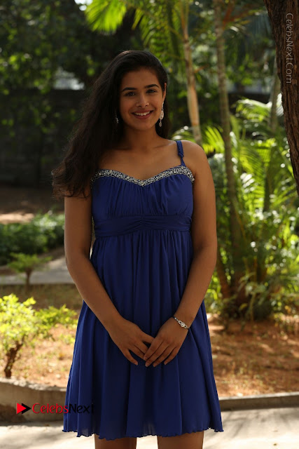 Actress Prasanna Stills in Blue Short Dress at Inkenti Nuvve Cheppu Movie Platinum Disc Function  0001.JPG
