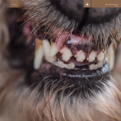 The 10 Best Album Cover Artworks of 2017: 01. Blanck Mass - World Eater