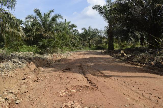 Pekerjaan Jalan Produksi di Selat Berubah Fungsi, Berikut Temuannya!