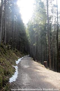 Parte del camino que rodea el lago Eibsee