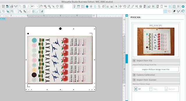 Silhouette Pixscan mat, silhouette pixscan tutorial, silhouette pixscan stickers