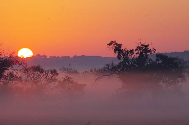 foggy-scenery-photo-08