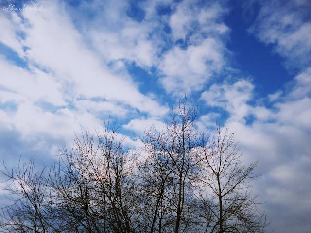 В Башкирию придет весна