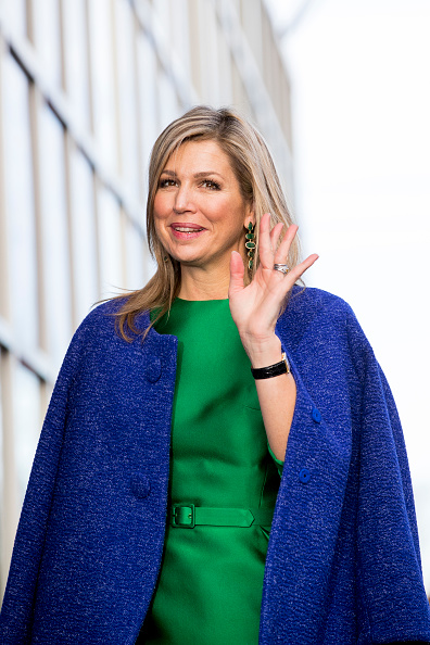 house plant emerald queen html with Queen Maxima Of  Herlands Visits on Fern House Plant Seeds also Plants Trees And Other Flowers also Queen Maxima Of  herlands Visits additionally Aglaonema together with Michelle Obama Shines US Party Attended David Beckham.