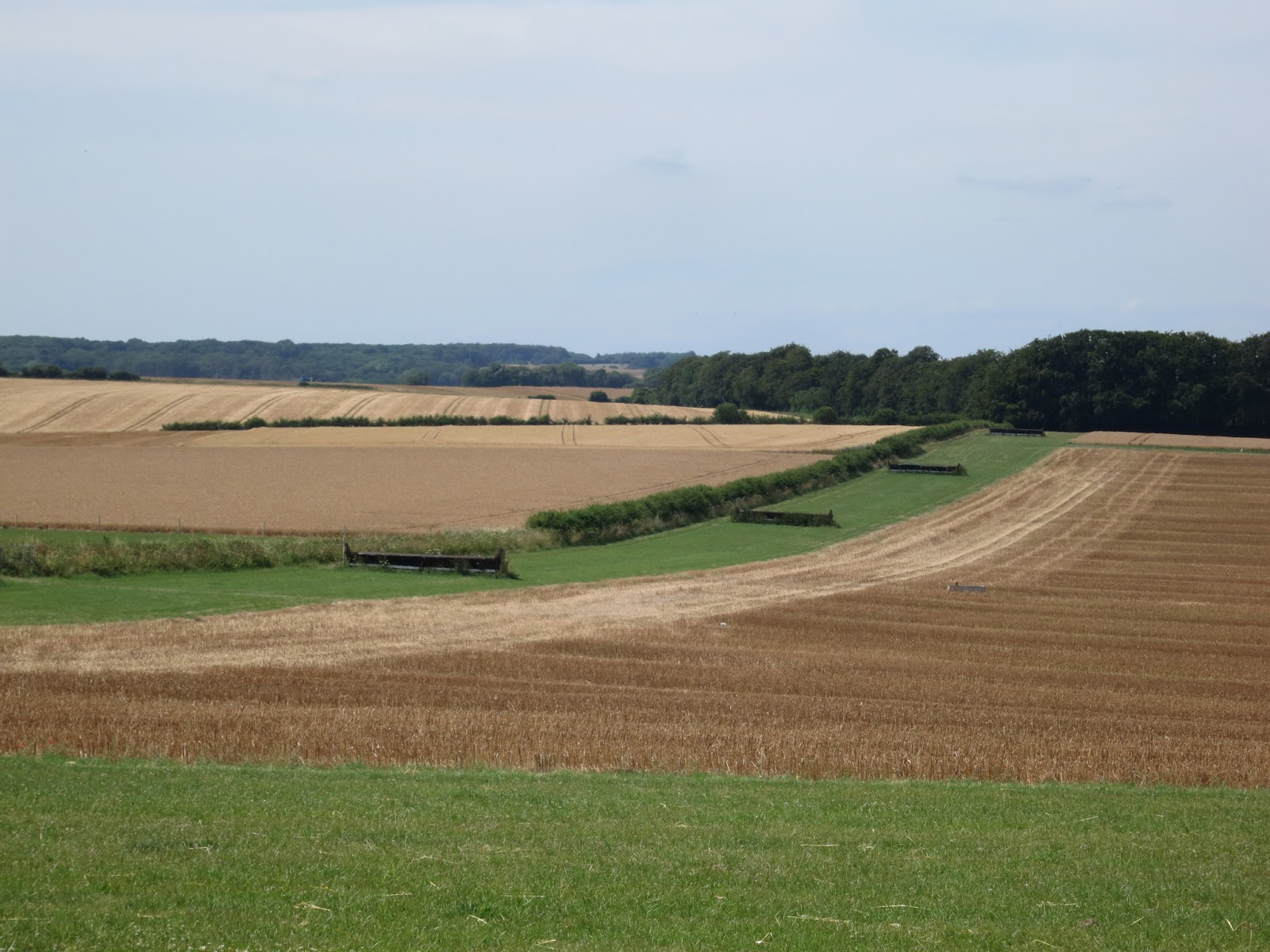 Mown fields of different colours (stubble) hedges, horse jumps and grass
