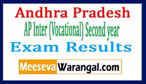 AP Inter ( Vocational) Second year Exam Results 2017