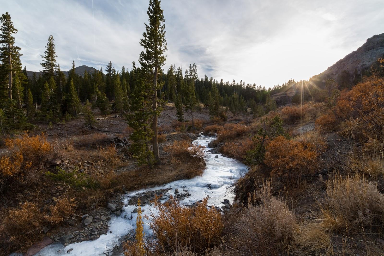 Naturetastic Blog: Forest Service Route 077 (Part 4