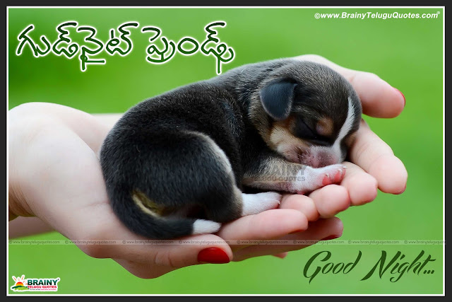 Here is heart touching good night quotes in telugu, Best telugu sms, Best thoughts and feelings good night wishes, New Telugu Good Night Wishes and messages, Telugu Good Night Love Wallpapers, True Love Quotes in Telugu, Love Quotes in Telugu, Telugu Good Night Love Quotations and Images, Telugu Love Good Night Images, Good Night my Sweet Heart in Telugu, Love Quotes and  Good Night images for Lover in Telugu language. Happy good night thoughts and wishes in telugu, Nice good night thoughts in telugu, Hope quotes at night images and wallpapers, Best good night thoughts and images in telugu, Good night telugu quotations for facebook whatsapp tumblr and google plus, heart touching quotes in telugu, Telugu heart touching quotes, Best telugu heart touching quotes, best heart touching quotes in telugu, heart touching telugu quotes, Heart touching love quotes, Best heart touching telugu love quotes,Telugu Subharaathri Greetings online for Friends,Best Telugu Quotes images pictures photoes for sharing facebook google plus free downloads,Good Night sms in Telugu,Telugu Good Night Picture Messages,Good night Telugu Greetings,Best Good night images wallpapers,heart touching good night quotes in telugu, Best telugu sms, Best thoughts and feelings good night wishes, Happy good night thoughts and wishes in telugu, Nice good night thoughts in telugu, Hope quotes at night images and wallpapers, Best good night thoughts and images in telugu, Good night telugu quotations for facebook whatsapp tumblr and google plus, heart touching quotes in telugu, Telugu heart touching quotes, Best telugu heart touching quotes, best heart touching quotes in telugu, heart touching telugu quotes, Heart touching love quotes, Best heart touching telugu love quotes