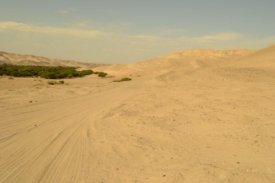 Desert Nazca Peru