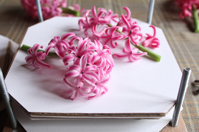 make your own flower press