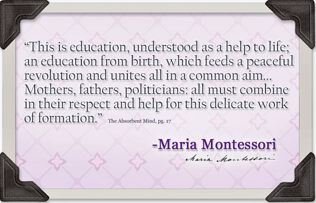 NAMC studying the works of montessori absorbent mind education for life quote