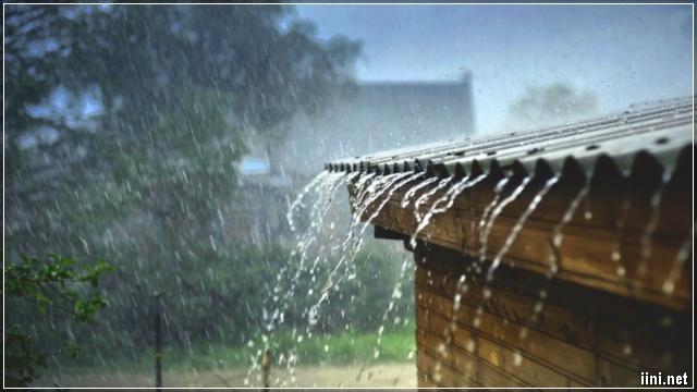 mưa tuôn trên mái nhà