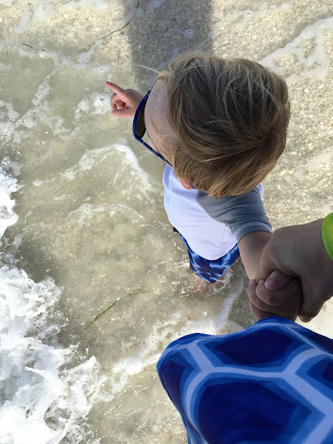 Sanibel and Captiva Toddler Travel Guide