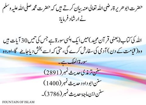 Hadith: Benefits of Reciting Surah Mulk - Message of Islam