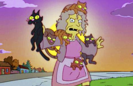 louca dos gatos, mulheres que adoram e que têm muitos gatos