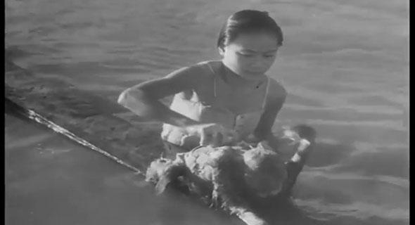 Video Dayak Bahau 1948