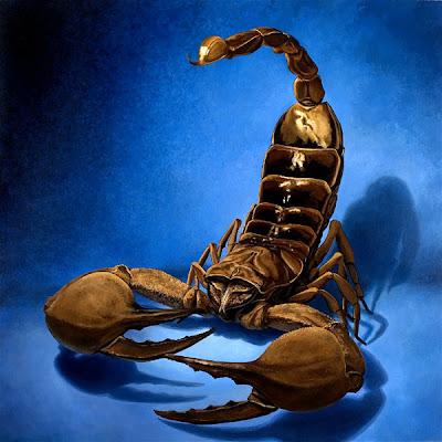 Arte, diseño y escorpiones.