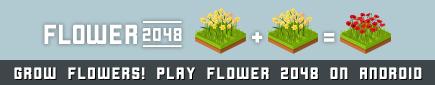 Flower 2048
