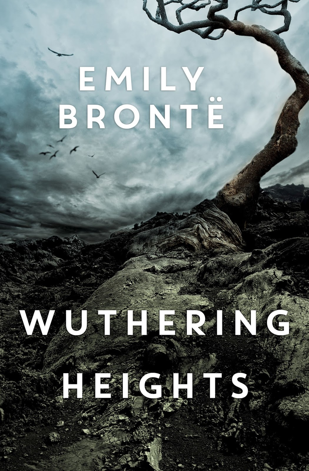 Book cover for Wuthering Heights in Didsbury book group