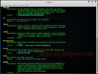 whatweb -v targetsite.com