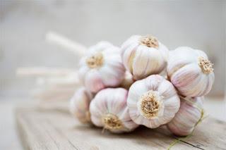 Cách dùng rau củ quả phòng ngừa sâu bệnh cho rau sạch tại nhà.