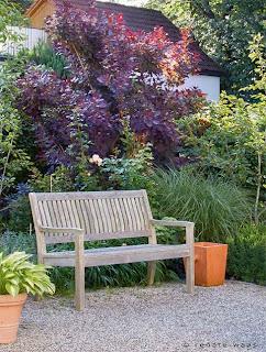 Vorgarten zum Geniessen - Sichtschutz zur Straße, frei wachsende Sträucher für Struktur, Gräser und Stauden und eine schöne Bank zum Ausruhen