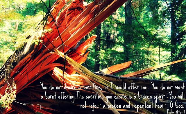 bible verse, inspiring verse, faith, Jesus loves you, god's word, redwoods, broken, http://bec4-beyondthepicketfence.blogspot.com/2016/09/sunday-verses_25.html