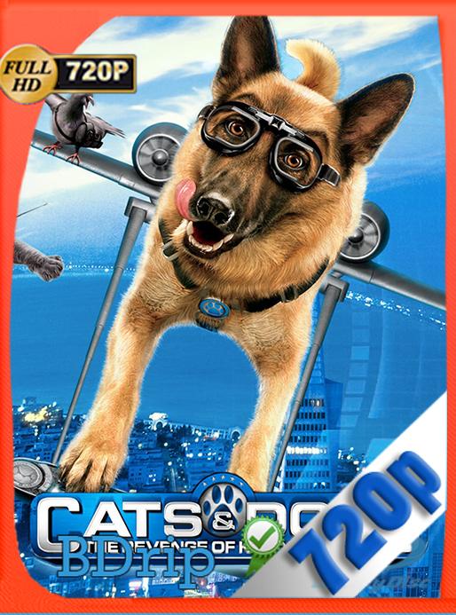 Como perros y gatos 2: La venganza de Kitty Galore (2010) 720p BDRip Dual Latino – Inglés [Subt. Esp] [GoogleDrive] [SYLAR]