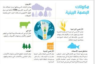 البصمة البيئية