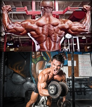 Big Back & Biceps Muscle Building Workout