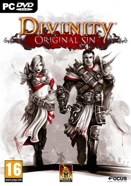 Divinity Original Sin Download Cover Free Game