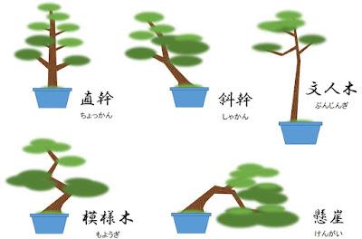 盆栽の樹形図
